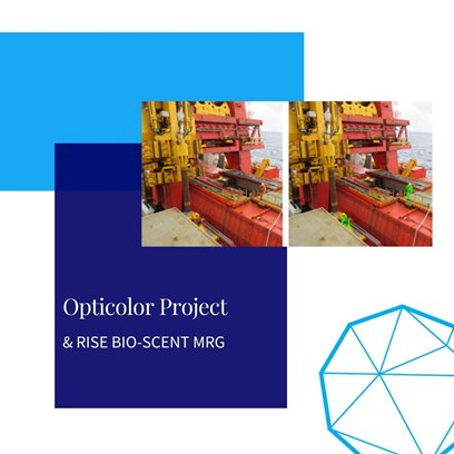 opticolor project